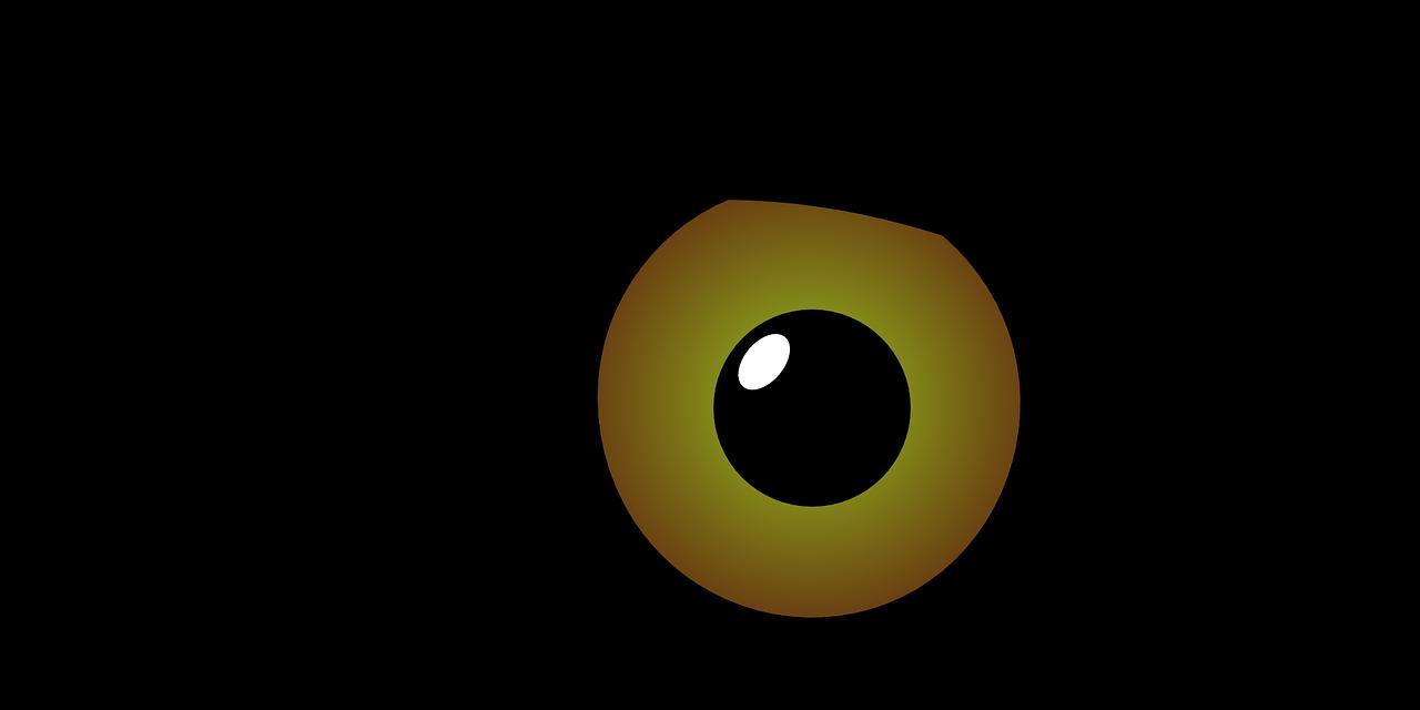 site web opticien
