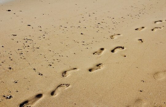 footprint seo